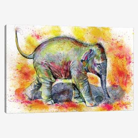 Elephant Baby Walking Alone Canvas Print #AKV224} by Anna Brigitta Kovacs Art Print
