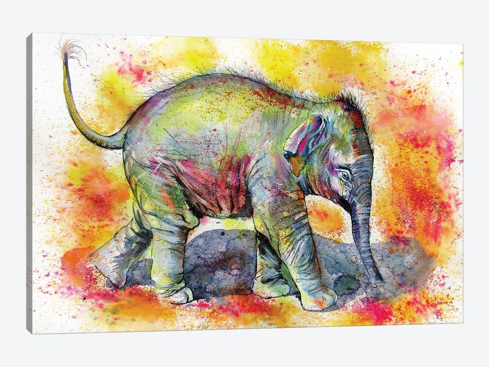 Elephant Baby Walking Alone by Anna Brigitta Kovacs 1-piece Art Print