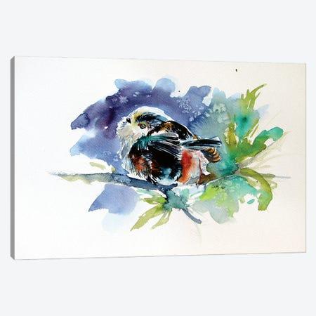 Little Bird Canvas Print #AKV226} by Anna Brigitta Kovacs Art Print