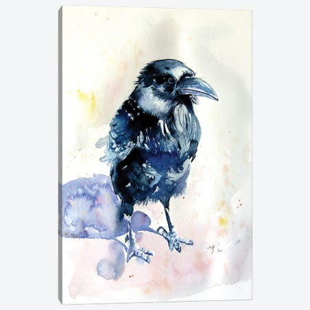Raven Canvas Print #AKV228} by Anna Brigitta Kovacs Canvas Art