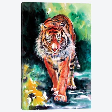 Tiger In Forest Canvas Print #AKV229} by Anna Brigitta Kovacs Canvas Artwork