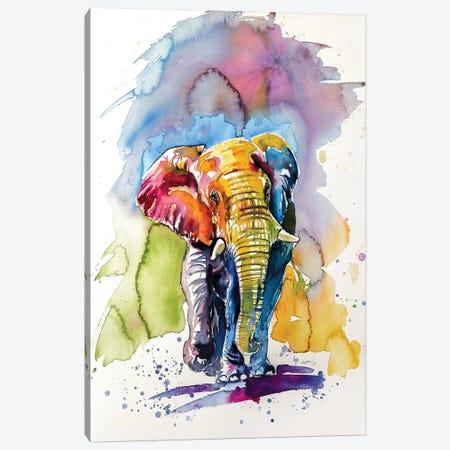 Colorful Elephant V Canvas Print #AKV22} by Anna Brigitta Kovacs Canvas Art