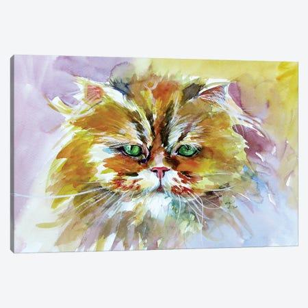 Cute Cat Canvas Print #AKV230} by Anna Brigitta Kovacs Art Print