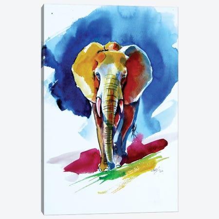 Majestic Elephant At Night Canvas Print #AKV232} by Anna Brigitta Kovacs Canvas Print