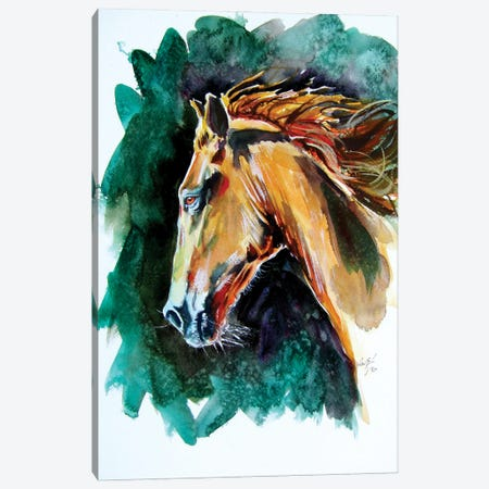 Majestic Horse Canvas Print #AKV233} by Anna Brigitta Kovacs Canvas Art Print
