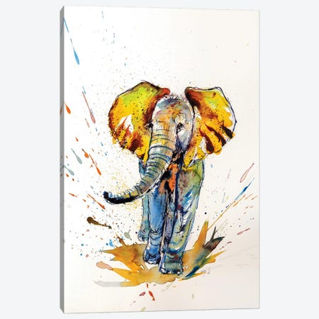 Colorful Elephant VI Canvas Print #AKV23} by Anna Brigitta Kovacs Canvas Artwork