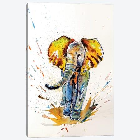 Colorful Elephant VI Canvas Print #AKV23} by Anna Brigitta Kovacs Canvas Artwork