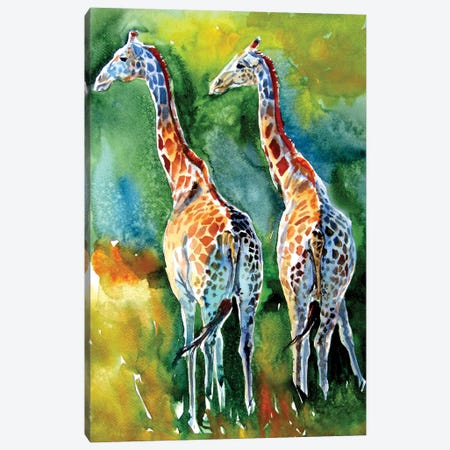 Giraffes On The Field Canvas Print #AKV245} by Anna Brigitta Kovacs Art Print