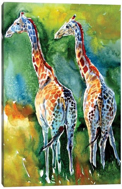 Giraffes On The Field Canvas Art Print