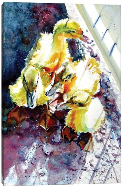 Gosling Canvas Art Print
