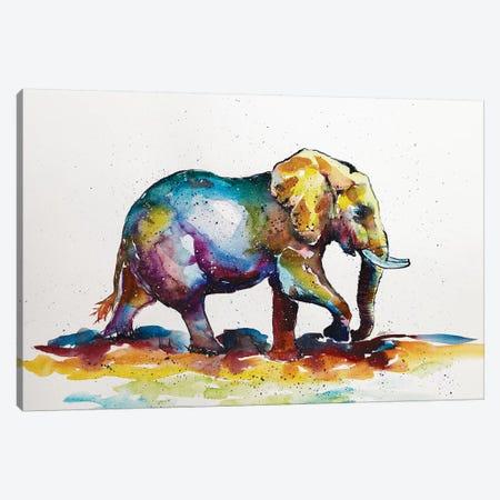 Colorful Elephant VII Canvas Print #AKV24} by Anna Brigitta Kovacs Canvas Print