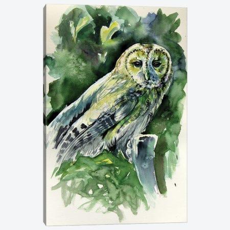 Majestic Owl Canvas Print #AKV259} by Anna Brigitta Kovacs Art Print