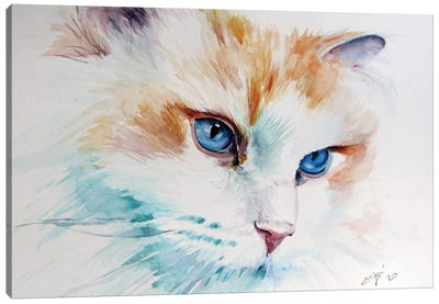 Cat Portrait I Canvas Art Print