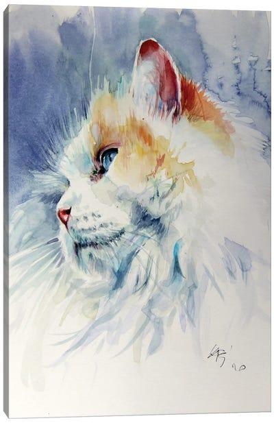 Cat Portrait II Canvas Art Print