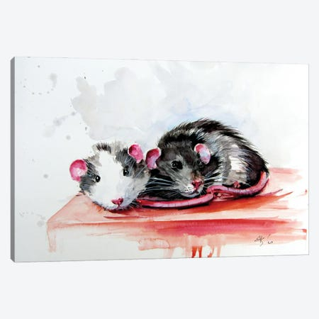 Rats Canvas Print #AKV273} by Anna Brigitta Kovacs Canvas Print