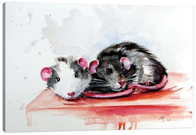 Rats Canvas Art Print