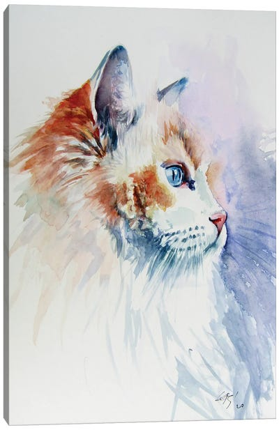 Cat Portrait III Canvas Art Print