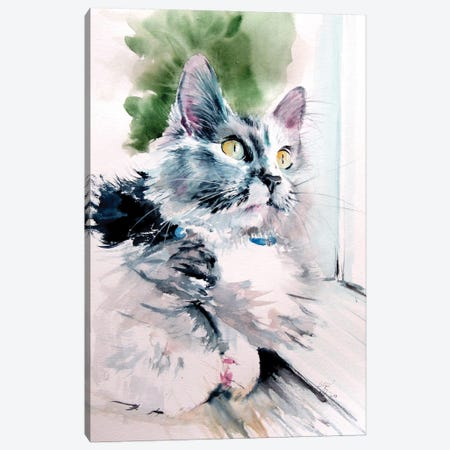 Cat In Front Of The Window Canvas Print #AKV278} by Anna Brigitta Kovacs Canvas Print