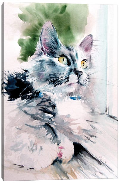 Cat In Front Of The Window Canvas Art Print