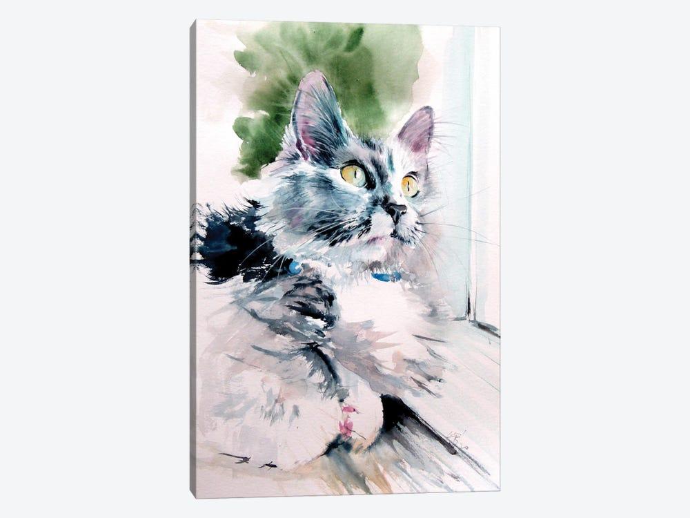 Cat In Front Of The Window by Anna Brigitta Kovacs 1-piece Canvas Artwork
