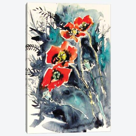 Some Poppies II Canvas Print #AKV284} by Anna Brigitta Kovacs Art Print