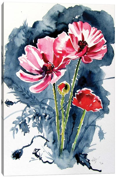 Some Poppy Flowers Canvas Art Print