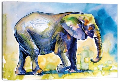 Majestic Elephant Alone III Canvas Art Print