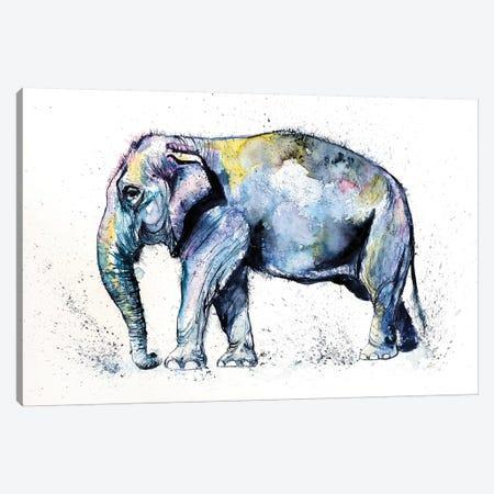 Elephant Canvas Print #AKV29} by Anna Brigitta Kovacs Canvas Artwork