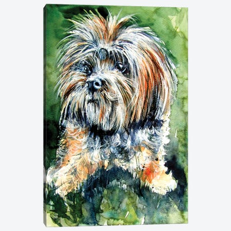 Cute Dog Canvas Print #AKV309} by Anna Brigitta Kovacs Canvas Art Print