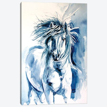 Majestic Horse Running II Canvas Print #AKV334} by Anna Brigitta Kovacs Canvas Art Print