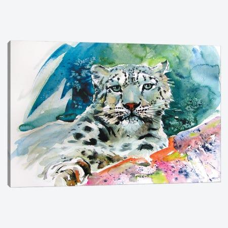 Snow Leopard II Canvas Print #AKV341} by Anna Brigitta Kovacs Canvas Art Print