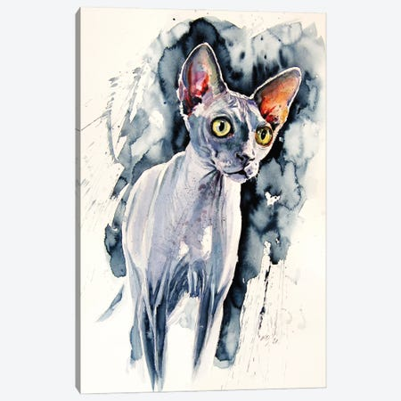 Sphynx Cat Canvas Print #AKV348} by Anna Brigitta Kovacs Canvas Art Print