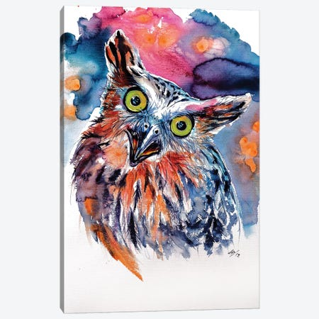 Funny Cute Owl Canvas Print #AKV37} by Anna Brigitta Kovacs Canvas Wall Art