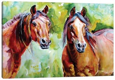 Horse Friends Canvas Art Print
