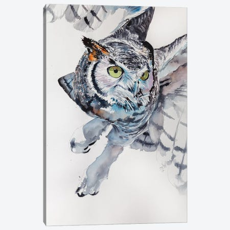 Great Horned Owl Canvas Print #AKV40} by Anna Brigitta Kovacs Canvas Artwork