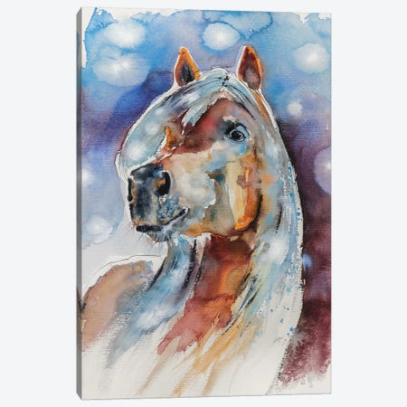 Horse Canvas Print #AKV41} by Anna Brigitta Kovacs Canvas Wall Art