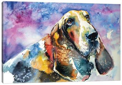 Basset Hound Canvas Art Print