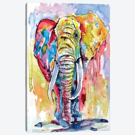 Majestic African Elephant Canvas Print #AKV51} by Anna Brigitta Kovacs Canvas Print