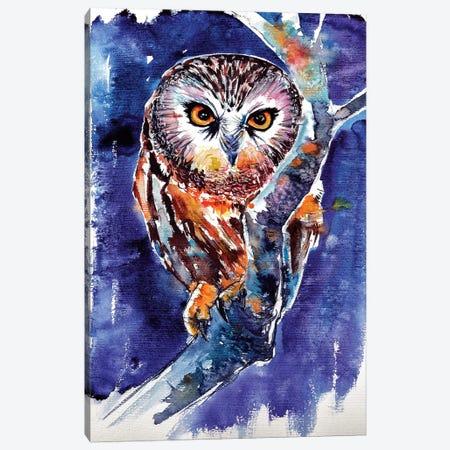 Owl At Night Canvas Print #AKV60} by Anna Brigitta Kovacs Canvas Art