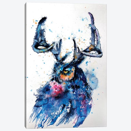 Owl III Canvas Print #AKV61} by Anna Brigitta Kovacs Canvas Art