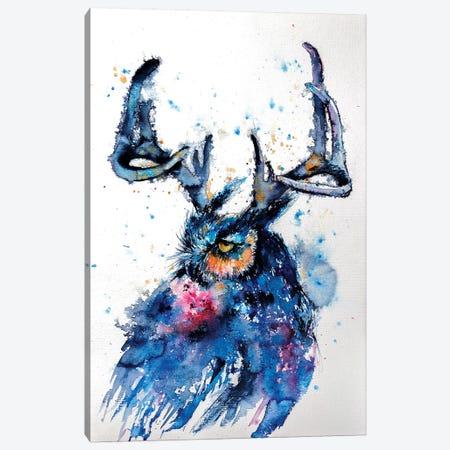 Owl III Canvas Print #AKV61} by Anna Brigitta Kovacs Canvas Art