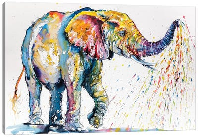 Playing Colorful Elephant Canvas Art Print