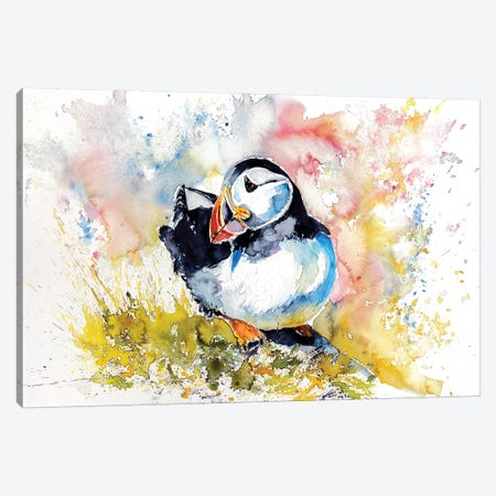 Puffin On Stone Canvas Print #AKV71} by Anna Brigitta Kovacs Art Print