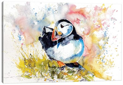 Puffin On Stone Canvas Art Print