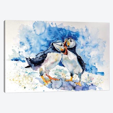 Puffins Canvas Print #AKV72} by Anna Brigitta Kovacs Art Print