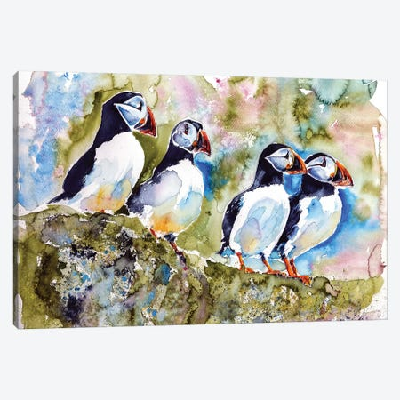 Puffins On Stone Canvas Print #AKV73} by Anna Brigitta Kovacs Canvas Print