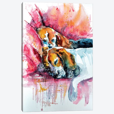 Sleeping Dogs Canvas Print #AKV79} by Anna Brigitta Kovacs Canvas Art Print