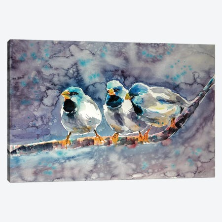 Talking Birds Canvas Print #AKV84} by Anna Brigitta Kovacs Canvas Print