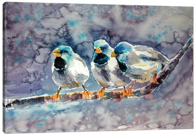 Talking Birds Canvas Art Print