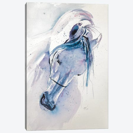 White Horse Canvas Print #AKV93} by Anna Brigitta Kovacs Canvas Art Print